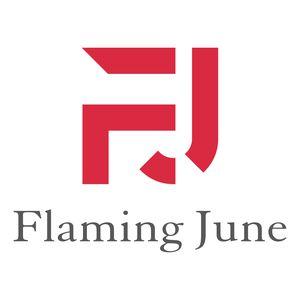FlamingJune合同会社のロゴ画像