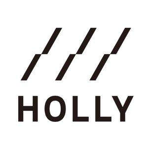 ホーリー情報システム株式会社のロゴ画像